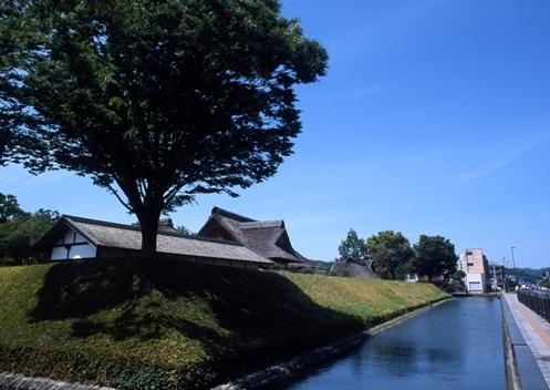 FWashikagaRG169(1).jpg