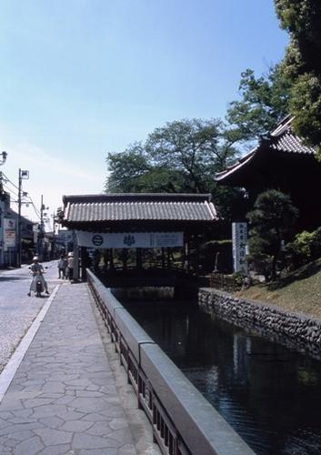 FWashikagaRG173(1).jpg