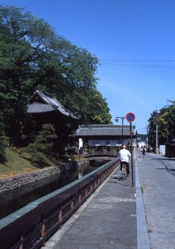 FWashikagaRG176(1).jpg