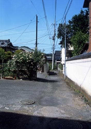 FWashikagaRG179(1).jpg