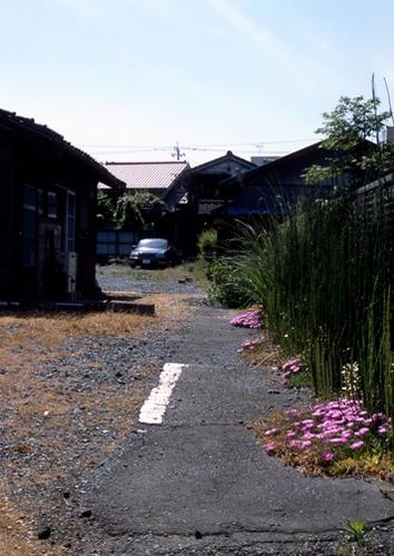 FWashikagaRG180(1).jpg
