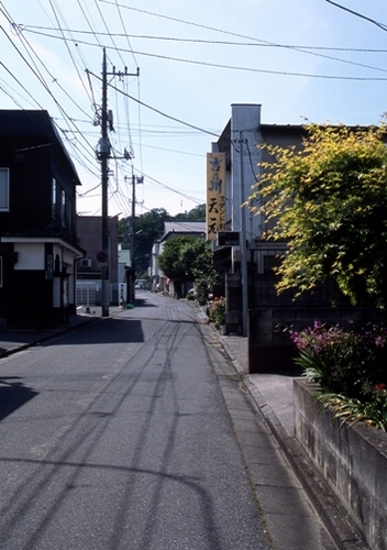 FWashikagaRG181(1).jpg
