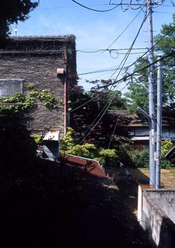 FWashikagaRG184(1).jpg