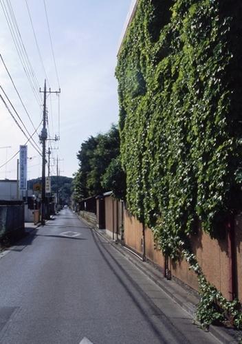 FWashikagaRG189(1).jpg