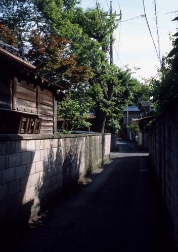 FWashikagaRG190(1).jpg