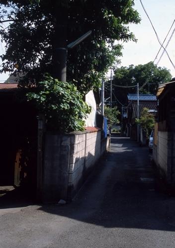 FWashikagaRG191(1).jpg