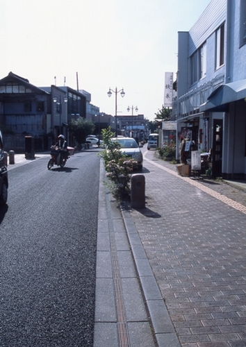 FWashikagaRG201(1).jpg
