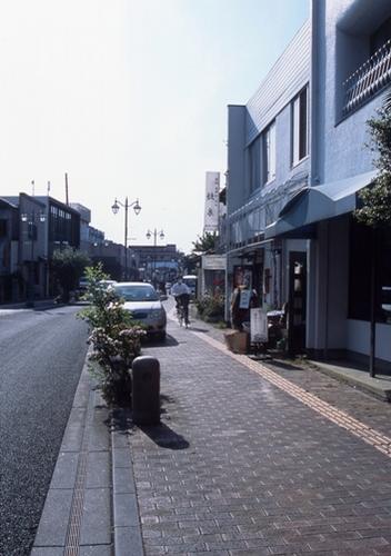 FWashikagaRG202(1).jpg