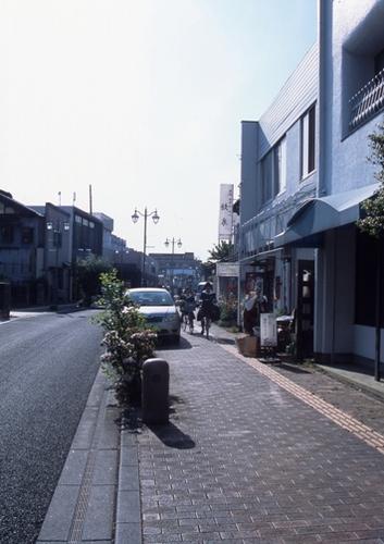 FWashikagaRG203(1).jpg