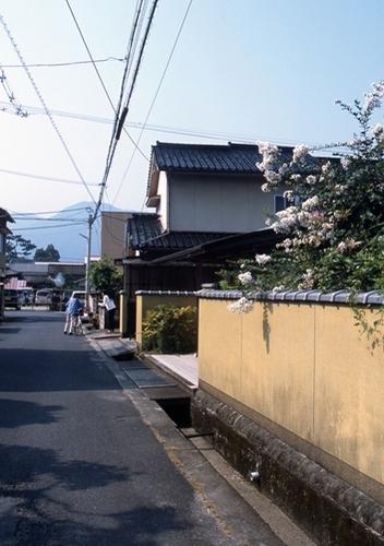 FWbicchutakahashiRG066(2).jpg