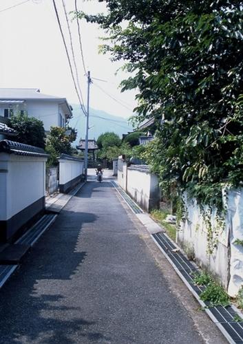 FWbicchutakahashiRG079(2).jpg