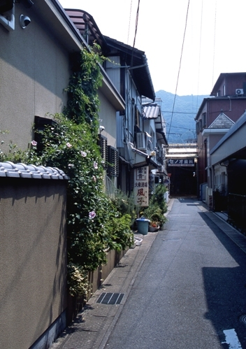 FWbicchutakahashiRG094(1).jpg