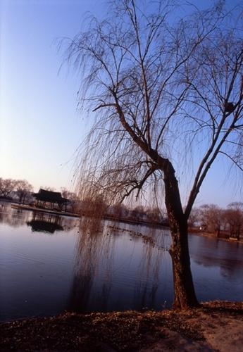 FWbuyeoRG034(1).jpg