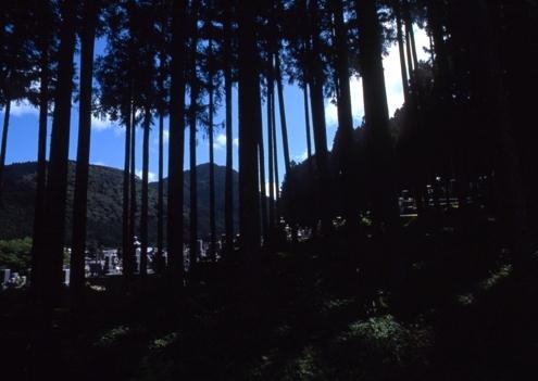 FWdorokawa-tenkawaRG001(1).jpg