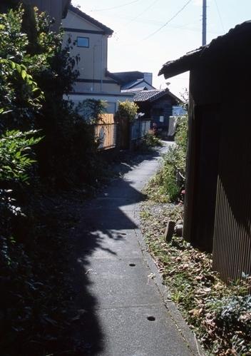 FWensyumoriRG045(1).jpg