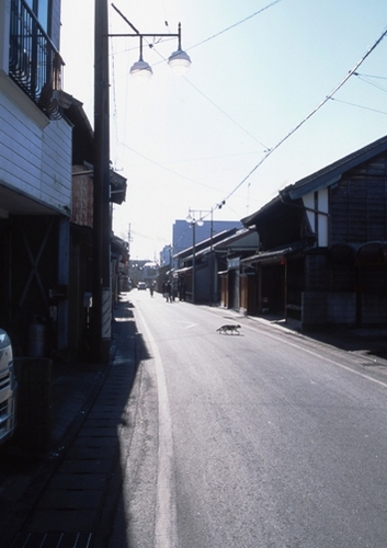FWensyumoriRG071(1).jpg