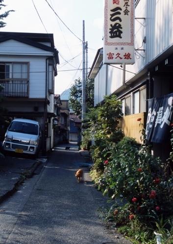 FWfujiyoshidaRG105(2).jpg