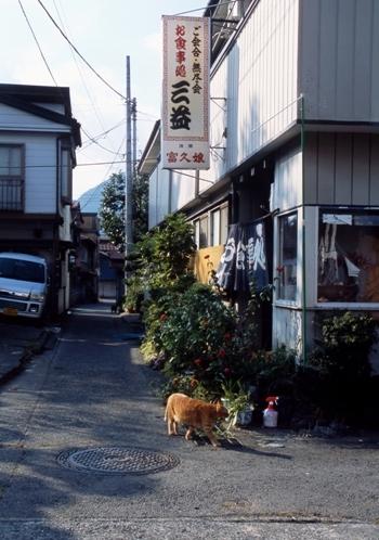 FWfujiyoshidaRG106(2).jpg