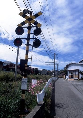 FWfujiyoshidaRG135(1).jpg