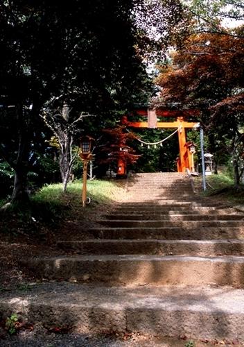FWfujiyoshidaRG147(1).jpg