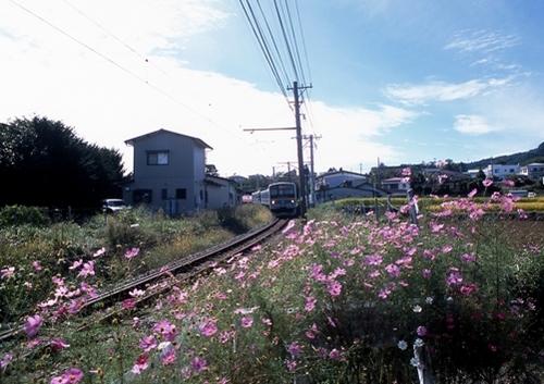 FWfujiyoshidaRG149(1).jpg