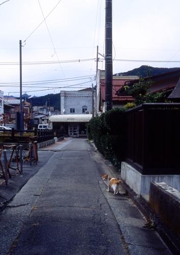 FWfujiyoshidaRG161(1).jpg