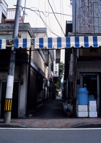 FWfujiyoshidaRG172(1).jpg