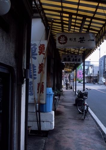 FWfujiyoshidaRG203(1).jpg