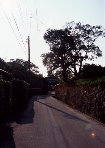 FWhagiRG020(1).jpg