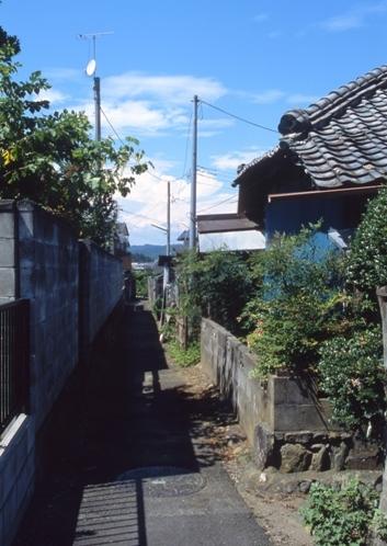 FWhitachiotaRG041(1).jpg