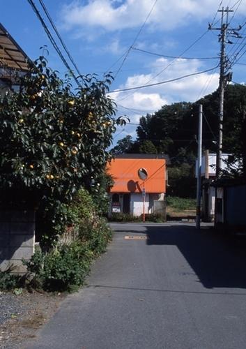 FWmashikoRG027(1).jpg