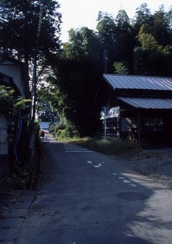 FWmashikoRG088(1).jpg