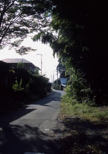 FWmashikoRG090(1).jpg