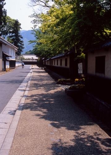FWmatsushiroRG011(1).jpg