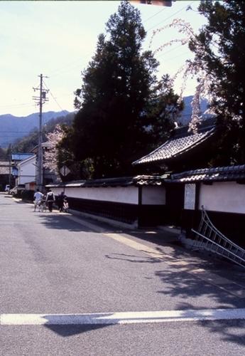 FWmatsushiroRG081(2).jpg