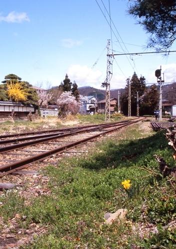 FWmatsushiroRG154(1).jpg