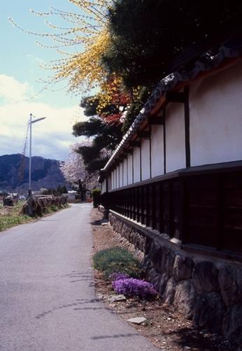 FWmatsushiroRG180(1).jpg