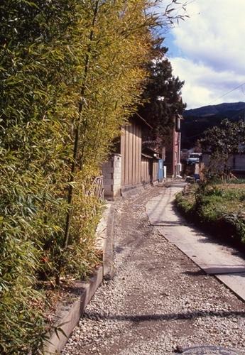 FWmatsushiroRG195(1).jpg