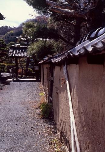 FWmatsushiroRG205(1).jpg