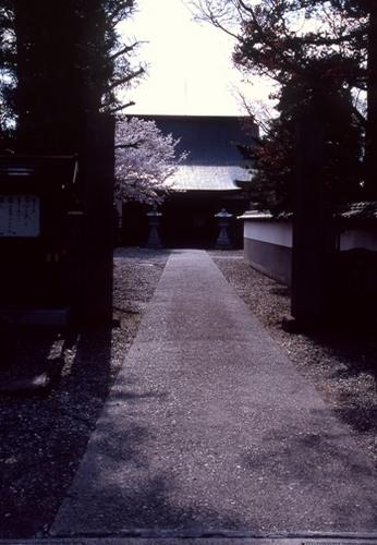 FWmatsushiroRG218(1).jpg