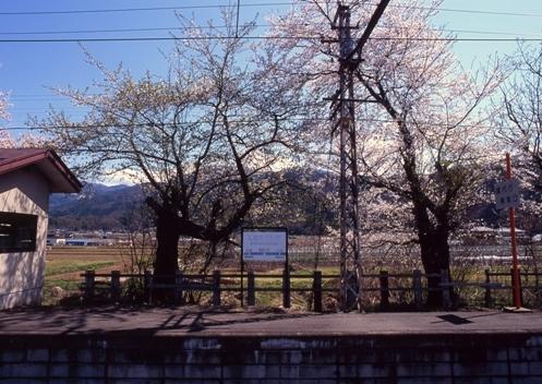 FWmatsushiroRG257(1).jpg