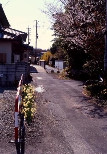 FWmatsushiroRG261(1).jpg