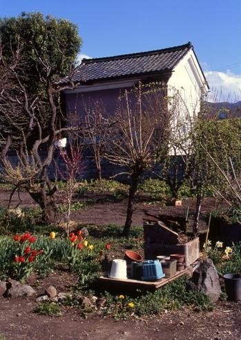 FWmatsushiroRG264(1).jpg