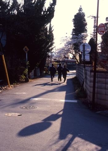 FWmatsushiroRG296(1).jpg