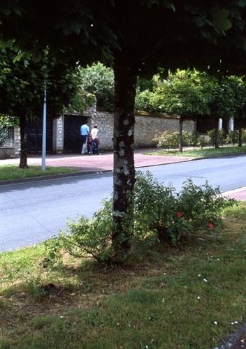 FWmoret-sur-loingRG003(1).jpg