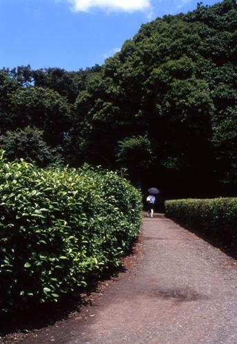 FWmusashinoRG183(2).jpg