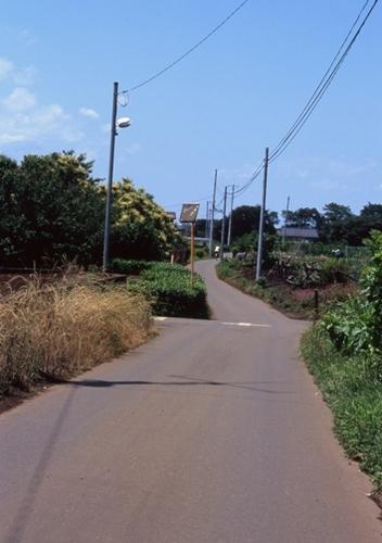 FWmusashinoRG190(1).jpg