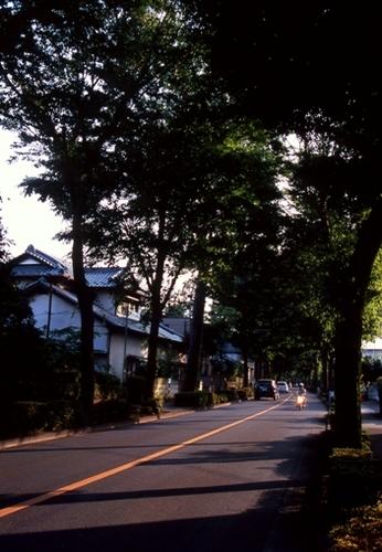 FWmusashinoRG203(1).jpg