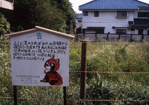 FWmusashinoRG212(1).jpg