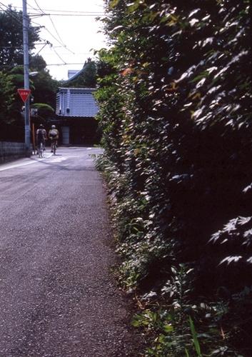 FWmusashinoRG214(1).jpg